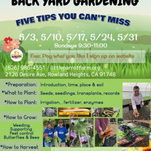 Back yard gardening online_Sunday, May 2020