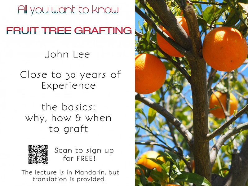 Little Parrot Farm - Fruit Trees Grafting