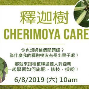 園藝課程: 釋迦樹 Care Tips for Cherimoyas