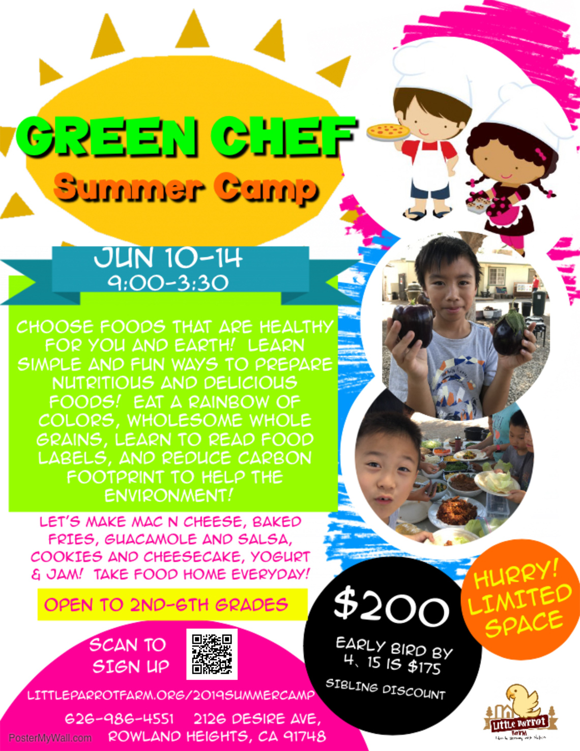 Summer Camp - Green Chef