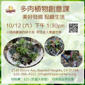 多肉植物創意課 Succulent Arrangement Workshop